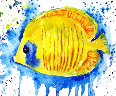 butterflyfish: watercolor butterfly fish
