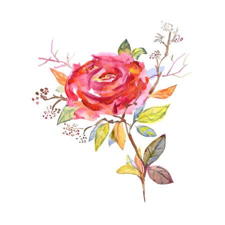 wedding bouquet: Bouquet of roses, watercolor, can be used as greeting card, invitation card for wedding. Illustration