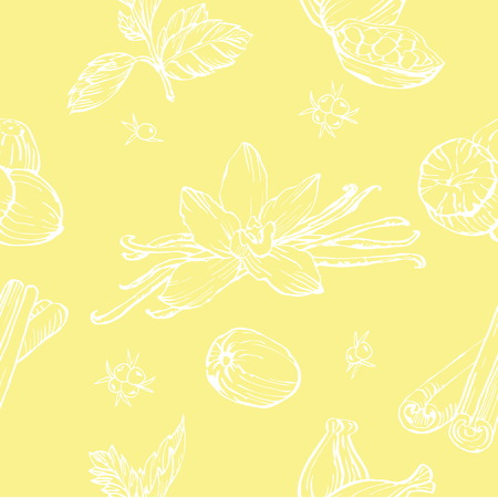 anise: Vector seamless pattern with herbs and spices. Modern stylish texture. Illustration