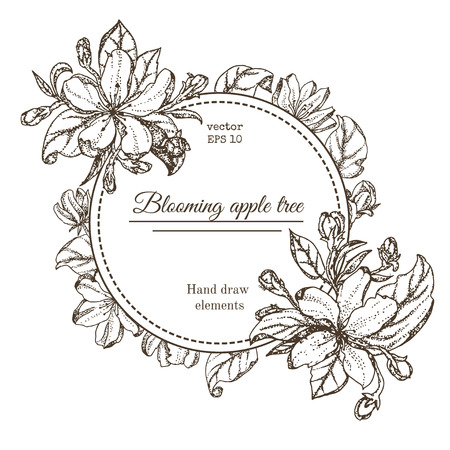 apple blossom: Vintage card with garden flowers. Hand drawn apple tree flowers. Vector illustration blooming branches cherry, pear flower, sakura. vector background of apple blossom Illustration