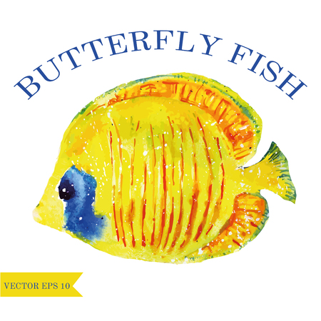 butterflyfish: watercolor butterfly fish vector animal art Illustration