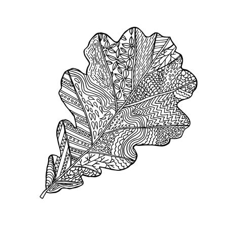 Hoja De Roble Dibujado A Mano Diseño De Impresión Para Colorear ...