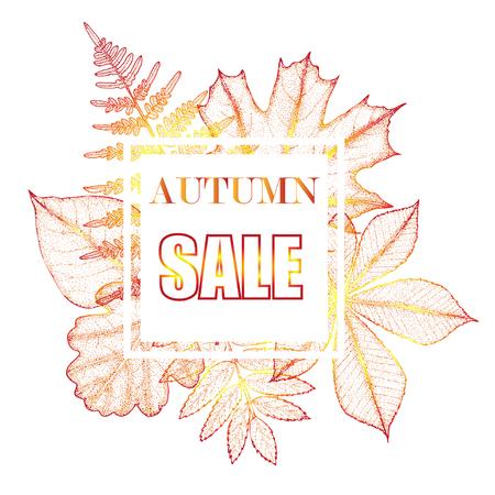 Sales banner with autumn leaves. Botanical illustration