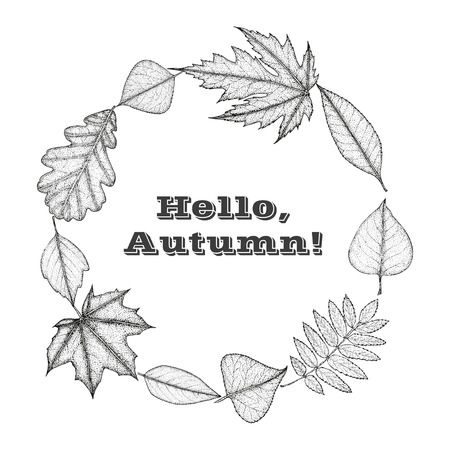 sketched shapes: illustration of a wreath of autumn leaves. Botanical illustration. Text Hello Autumn. Illustration