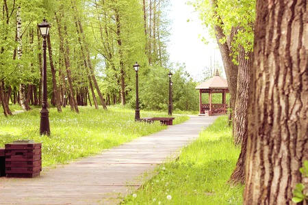 Path in the park, which leads to the gazebo. Beautiful park with trees, lanterns and gazebo. Stock Photo