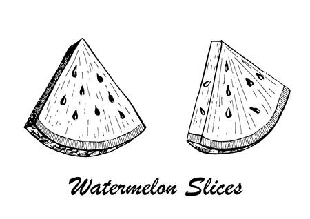 Hand drawn vector illustration of watermelon slices. Çizim