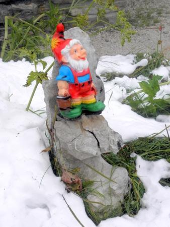 dwarf: Colourful little dwarf by the snow, Bechtesgaden, German Alps.