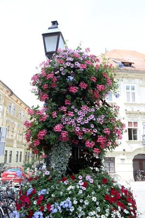 ljubljana: Streets of Ljubljana 9