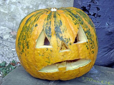 scarry: A picturesque, funny, colourful but angry Halloweens pumpkin. 8