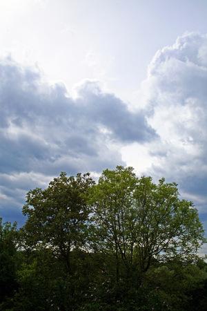 storm coming: Spring in the country,storm coming,2,Bregana Pisarovinska,Croatia,EU,2016. Stock Photo