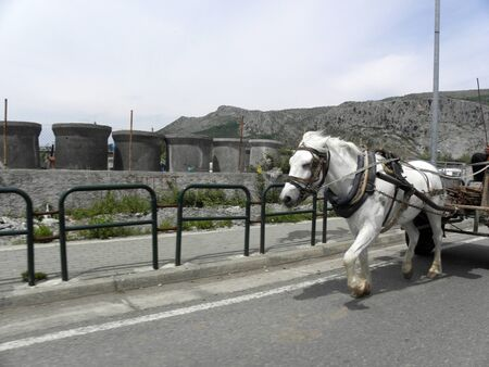 Albanian Tirana surroundings Redakční