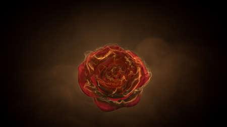 Flaming rose flower on black background. Love feeling concept. 3d rendering