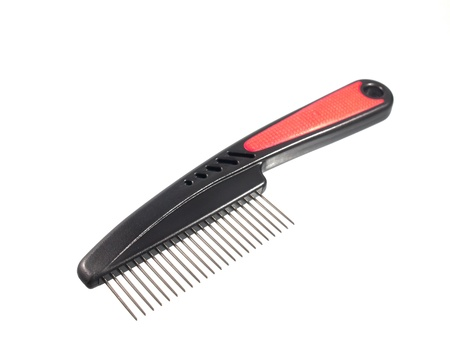 pets comb  photo