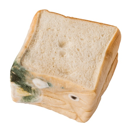 stale: Moldy bread  Isolated Stock Photo