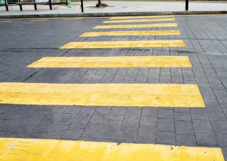Crosswalk line photo