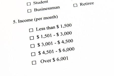 Survey Marketing, Ingresos
