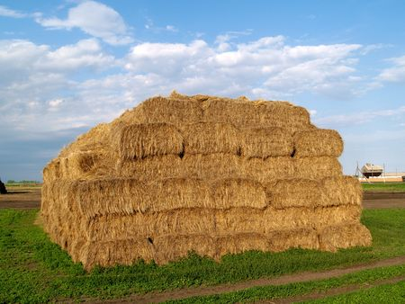 bale of haystack, blue sky and green grass
