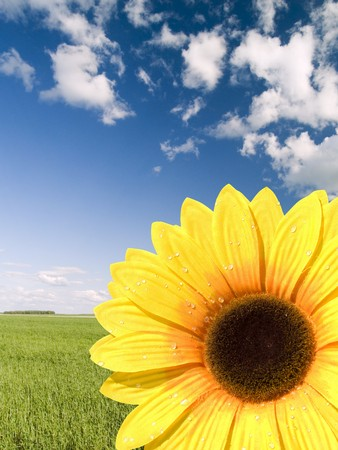 Bright artificial sunflower on a background of the light-blue sky Stock Photo