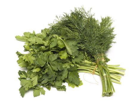 dill parsley to spices bunch isolated on white background  photo