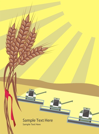 reaping: row of harvesters threshing wheat, vector