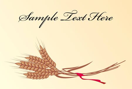bunch of ripe wheat ears with red ribbon, vector Vector
