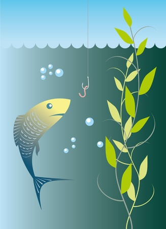 fish wants to grab the bait under water
