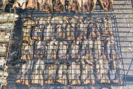 preservation: Grilling fish,fish preservation of countryside in thailand by fire and smoke.
