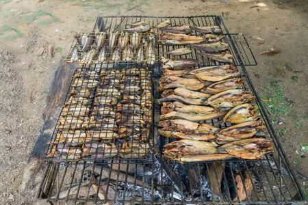 Grilling fish,fish preservation of countruside in thailand by fire and smok. Stock Photo
