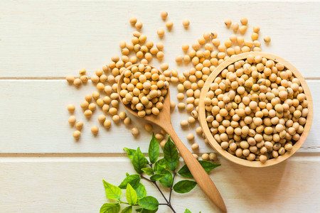 Soy been on spoon it on white table background with copy space,healthy concept. Stockfoto