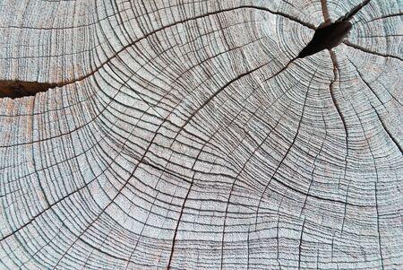 image of wooden background photo
