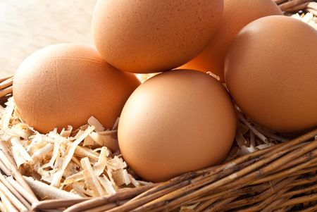 animal origin: Egg on sawdust with old basket over on wooden background