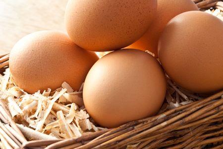 origen animal: Huevo en serrín con la vieja cesta sobre el fondo de madera