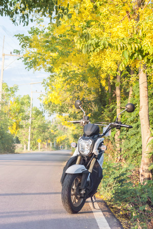 x country: Lamphun - April 27: White Honda ZOOMER X Motorcycle On The Country Road, Yellow Flower For Background In Summer Day April 27, 2015 in Lamphun, Thailand. Editorial