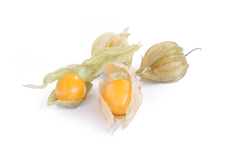 cape gooseberry (delicious physalis) fruit in close-up isolated on white background