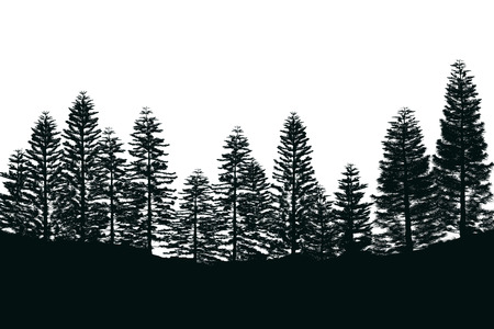 Pine Tree Forest Silhouette Isolated Oon White Background