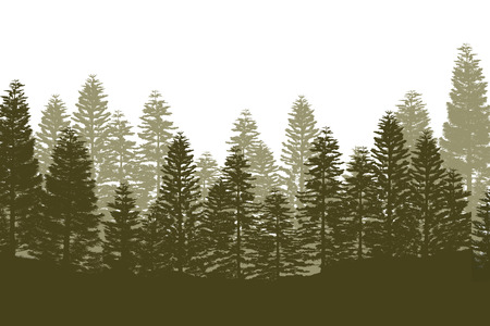 Pine Tree Forest Silhouette Isolated On White Background Stok Fotoğraf