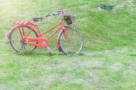 Red Old Bicycle On Green Grass In Summer Day. Stok Fotoğraf