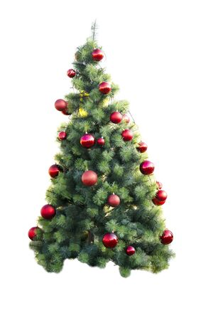 Decorated Ball Red On Christmas Green Tree For New Year Isolated On White Background.