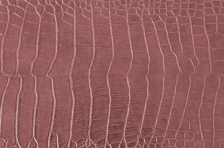 cocodrilos: Cocodrilo patr�n de piel, textura de piel de cocodrilo sin fisuras