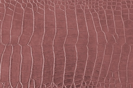 Crocodile Skin Pattern , Alligator skin seamless texture photo