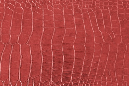 Crocodile Skin Pattern , Alligator skin seamless texture photo