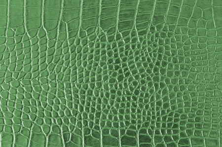 Crocodile Skin Pattern , Alligator skin seamless texture Stock Photo - 11682120