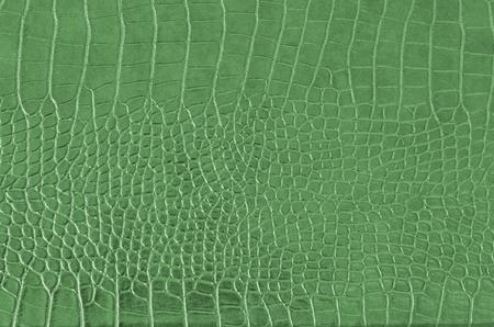 Cocodrilo patrón de piel, textura de piel de cocodrilo sin problemas Foto de archivo - 11682123