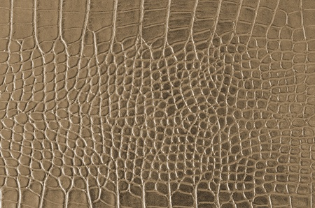 Crocodile Skin Pattern , Alligator skin seamless texture Banco de Imagens - 11682265