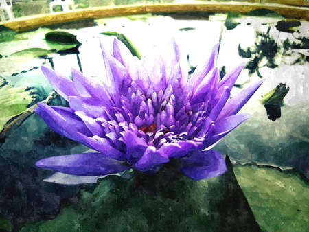 watercolor painting of  waterlilies and pads in pond