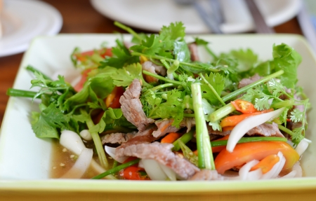Spicy salad of roasted beef  , Thai style food photo
