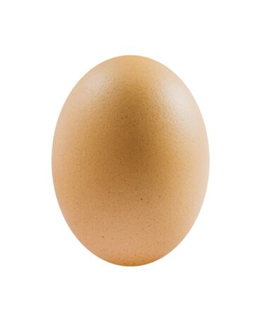 one  brown egg on white background   photo