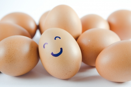 brown eggs with happy face and friends  on white background photo