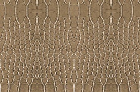 art background with crocodile skin , Alligator skin seamless texture, abstract wallpaper photo