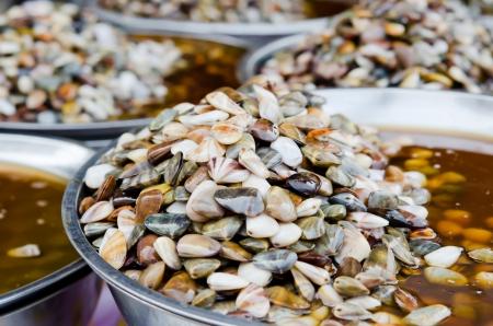 vittatus: Preserved Razor clam for sale in  market of Thailand Stock Photo